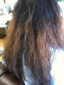 (参考)パーマを失敗した髪の毛