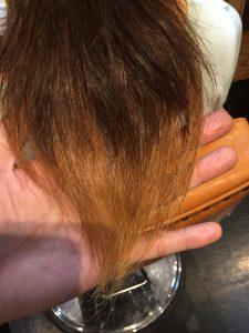 襟足の毛先はブリーチ毛です