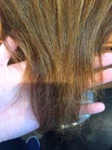 髪のコンディション