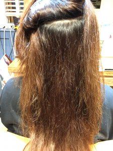 内側も切れ毛と枝毛さんが多いです