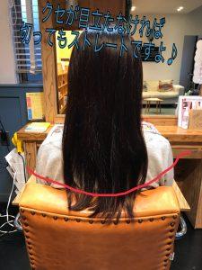 これくらいのくせ毛の戻りなら切っても大丈夫