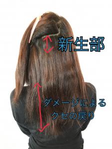 縮毛矯正をされるお客様のクセの解説