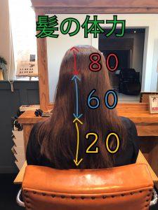 髪の体力の説明図