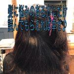 髪にお悩みをお持ちの方にだけ読んでいただければ幸せです