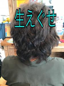 髪がまとまら無い原因は3つある 生えぐせ
