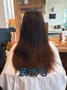 髪がパサつくのは波状毛が原因