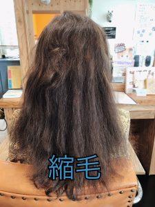 髪がパサつくのは縮毛が原因