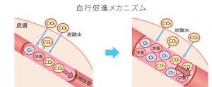 炭酸泉で血行促進