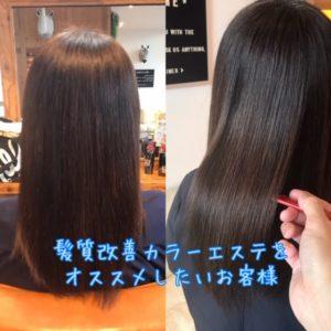 髪質改善 カラーエステ をお勧めしたい髪質とは?