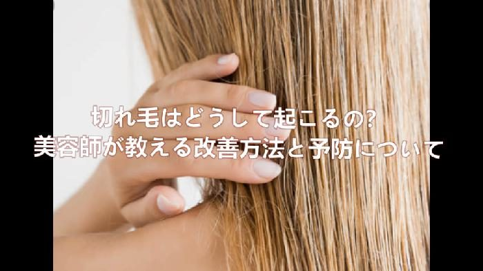 切れ毛が起きる原因、解決方法とよぼうについて